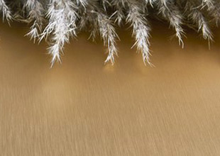 Brushed Brass Aluminum by Chemetal