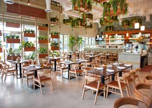 Sette Osteria Offers Lush Green Space in Miami